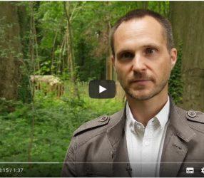 Restauration du bois de la Béguinière : un suivi sur le long terme
